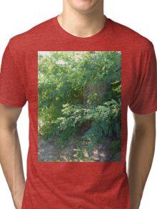 I'm a tree hugger. Tri-blend T-Shirt