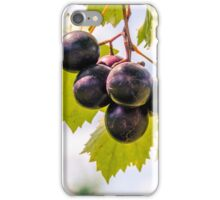 Grape Vine 6 iPhone Case/Skin
