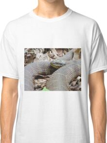 Brown Water Snake Classic T-Shirt