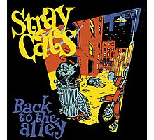 Stray Cats Back To The Alley  Photographic Print