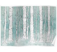 Birch Forest Poster