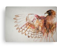 hawk I Canvas Print