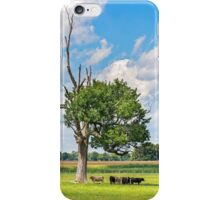 Cows in the Shade iPhone Case/Skin