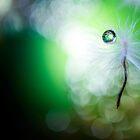 Tiny Dancer by Sue Nueckel