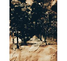 The Path Ahead Photographic Print