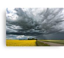Prairie Rain Metal Print