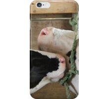 Affection iPhone Case/Skin