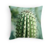 cactus photography Throw Pillow