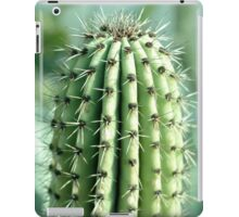 cactus photography iPad Case/Skin