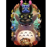 Totoro, Stitch, Dragon ! Photographic Print