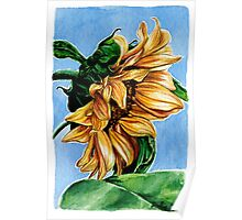 Sunflower Watercolor Painting Poster