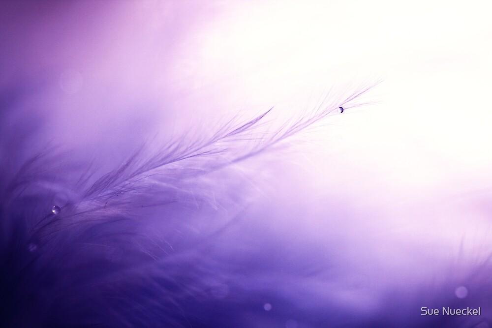 Little Angels by Sue Nueckel
