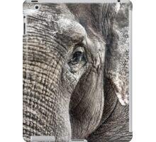 Asian Elephant iPad Case/Skin