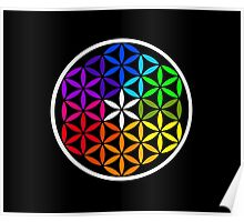 Secret flower of life colored Poster