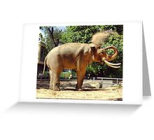 Asian Elephant at Berlin Zoo Greeting Card