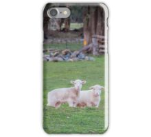Lil Lambs iPhone Case/Skin