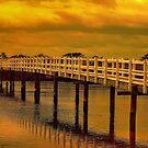 Riverglow by wallarooimages