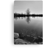 Silhouette Tree Canvas Print