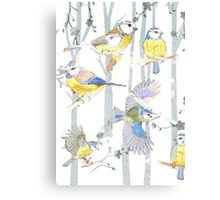 Bluetits in the forest Canvas Print