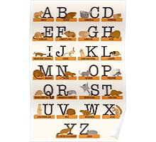 Rodents Alphabet Poster
