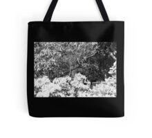 Dartington. England. Secret. Film Camera Photography ® Tote Bag