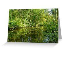 Creek At Whitesbog - Browns Mills - New Jersey - USA Greeting Card