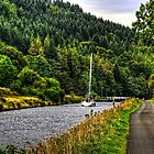 Crinan Canal by Tom Gomez