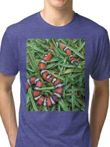 Coastal mountain king snake Tri-blend T-Shirt