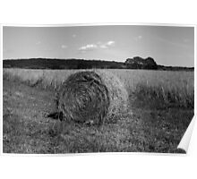 Hay Bale I BW Poster