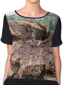 Tree Rot Chiffon Top