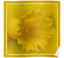 Cancer Council Of Australia - Daffodil Day Poster