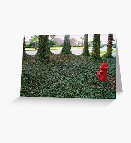 Green & Red Greeting Card