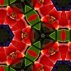 Kaleidoscope Geometry Pattern From Nature 43 by Kenneth Grzesik