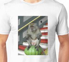 Monkey - Batu Caves, Malaysia Unisex T-Shirt