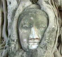 Buddha, Ayutthaya City - Thailand Sticker