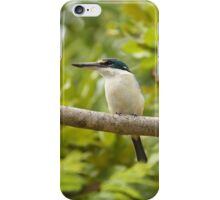 Sacred Kingfisher iPhone Case/Skin