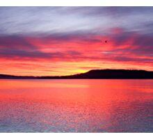 Panoramic Crimson Sunrise. Photo Art, Prints, Gifts, and Apparel. Sticker