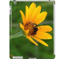 Bee On A Smooth Oxeye iPad Case/Skin