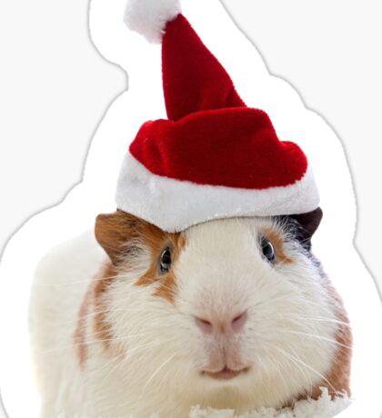 Christmas Guinea Pig in Santa's hat Sticker