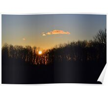Sunset Trees 2 Poster