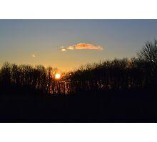 Sunset Trees 2 Photographic Print