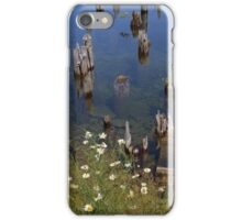 Old Pilings Fayette State Park 1 iPhone Case/Skin