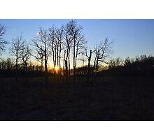 Aspen Prairie Sunset Photographic Print