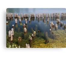 Old Pilings Fayette State Park 2 Metal Print