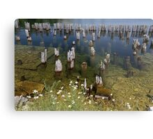 Old Pilings Fayette State Park 3 Metal Print
