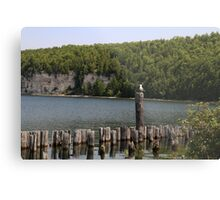 Old Pilings and Dolomite Cliffs 2 Metal Print