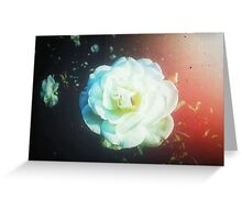 VINTAGE WHITE FLOWER Greeting Card