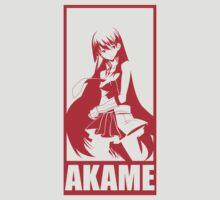 Akame Ga Kill - Akame 3 by aguirreink