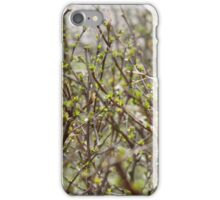 spring shrubbery iPhone Case/Skin