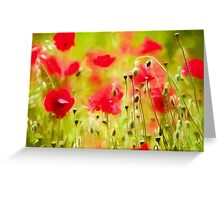 Art of Poppy by David Tovey Greeting Card